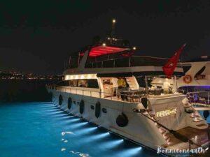 搭遊艇夜遊博斯普魯斯海峽夜遊